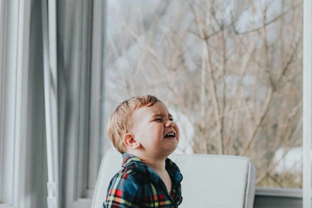 5 Great Tips on Navigating the Toddler Years 2