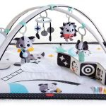 What Is The Best Baby Play Gym?
